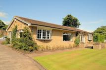 2 bedroom Detached Bungalow to rent in Moorlands, Birdcage Lane...
