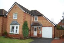4 bed house in 6 Edderston Ridge...
