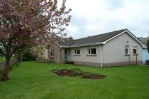 4 bed house to rent in Dunree, Mamore Drive...