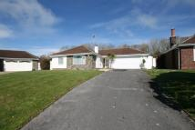 Detached Bungalow to rent in Huccaby Close...