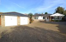 4 bedroom Bungalow for sale in Rayham Road...