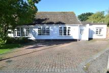 Detached Bungalow in Willow Way, Chestfield...