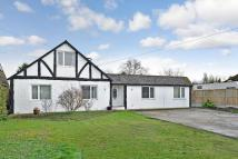 Bungalow for sale in Chestfield Road...