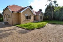 4 bed Bungalow in Rayham Road...