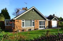 3 bedroom Bungalow in Summerfield Avenue...