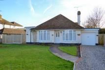 Bungalow for sale in The Drive, Chestfield