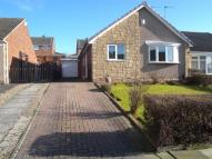 Semi-Detached Bungalow in Royston Grove...