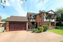 Detached house for sale in Crown Lane, Old Basing...