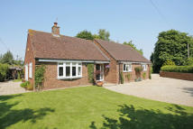 Detached Bungalow for sale in Old Basing