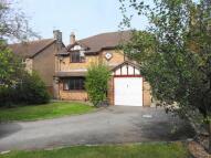 4 bedroom Detached house to rent in Millfields, Eccleston...