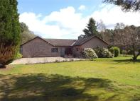 Bungalow for sale in Mossfield, Invergordon...