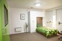 Studio flat to rent in Disabled-friendly...
