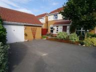 3 bed Detached house to rent in Haskell Close...