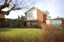3 bed Detached house to rent in Siskin Hill...