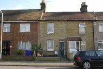 Elm Road Terraced house to rent