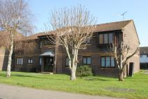 Flat to rent in Campion Court...