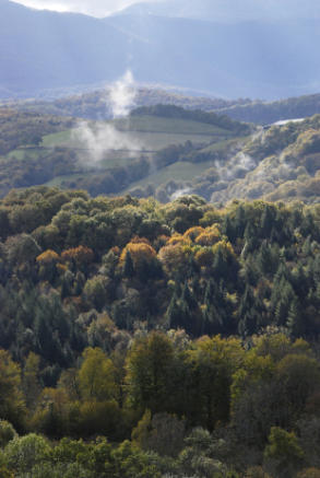 Baronnies, autumn