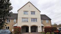 3 bed property to rent in Oakey Drive, Wokingham