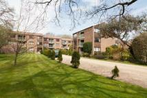 2 bedroom Flat to rent in Chichester