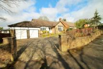 4 bed Detached Bungalow to rent in Longdale Avenue...