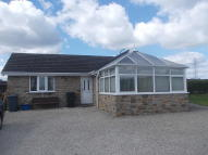 1 bed Detached Bungalow to rent in Nether Haugh, Rotherham