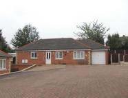 3 bed Detached Bungalow to rent in Nabeel Court...
