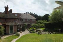 Midhurst property to rent