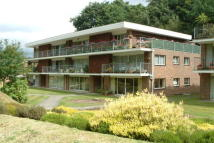 2 bed Flat to rent in Midhurst