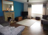 7 semi detached house to rent