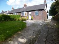 Semi-Detached Bungalow for sale in Ostlers Lane, Cheddleton...