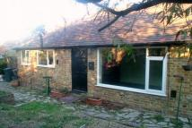 Detached Bungalow to rent in 203 Canterbury Road...