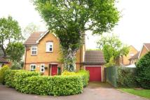 5 bedroom Detached house to rent in Hill Top Rise...