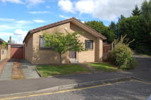 2 bed Detached Bungalow in 35 High Station Road...