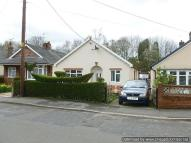 Detached Bungalow to rent in Linley Road, Alsager, ST7