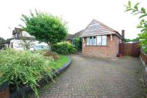 Semi-Detached Bungalow in Oliver Road, Shenfield...