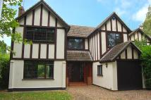 Detached home to rent in Hall Green Lane, Hutton...