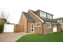 Detached property to rent in Chequers Road, Writtle...