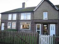 3 bedroom semi detached house to rent in Ennerdale Terrace...