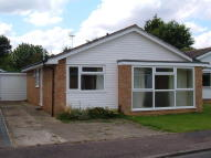 Bungalow to rent in Craven Close...