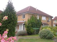 Cluster House to rent in Muntjac Close...