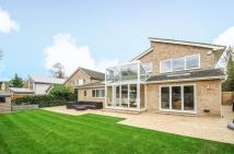 Detached property for sale in Surbiton