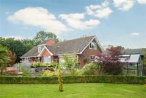 4 bedroom Detached Bungalow in Friskney