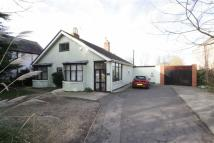 Detached Bungalow for sale in Sleaford Road, Boston...