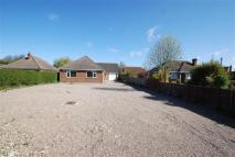 Detached Bungalow in Eastwood Road, Boston