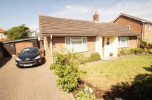 3 bedroom Detached Bungalow in Leiston