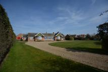 6 bed Detached Bungalow for sale in Halesworth