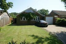Wenhaston Detached Bungalow for sale