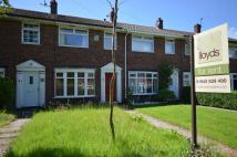 3 bed Terraced property to rent in Hollington Way...