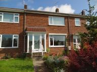 Eden Drive Terraced property to rent