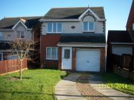Detached house to rent in Kittiwake Close...
